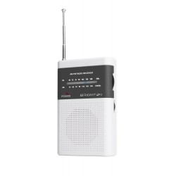 Radio BRIGMTON BT350B